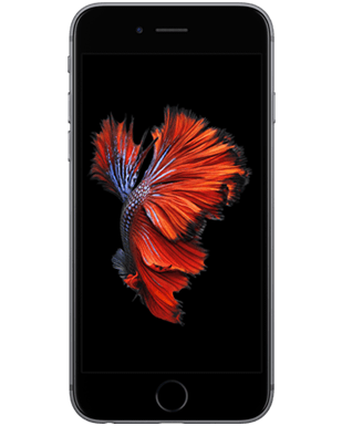 Apple iPhone 6s (32GB) Detailansicht