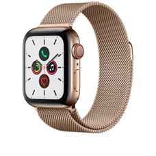 Apple Watch S5 LTE Steel 40 Milanaise