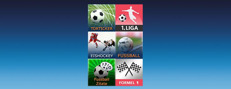 SMS Sport Infoservice