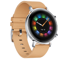 Huawei Watch GT2 42mm Classic