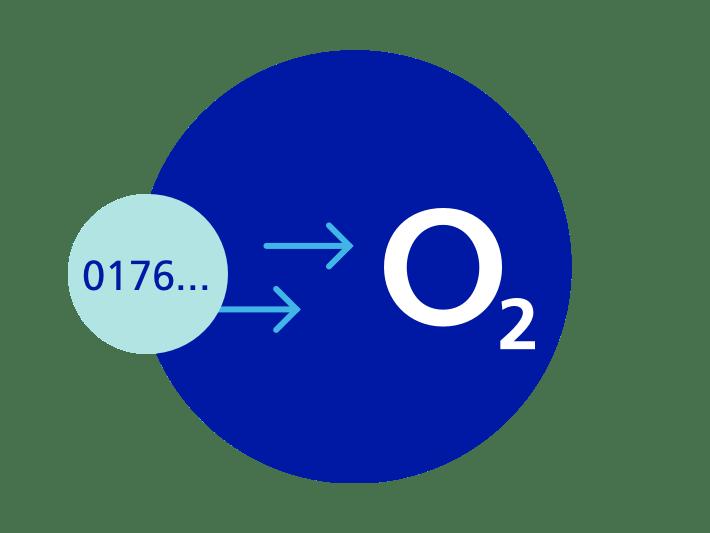 Auftragserteilung und Dateneingabe