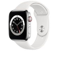 Apple Watch S6 LTE 44 Steel Sport