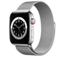 Apple Watch S6 LTE 44 Steel Milanaise